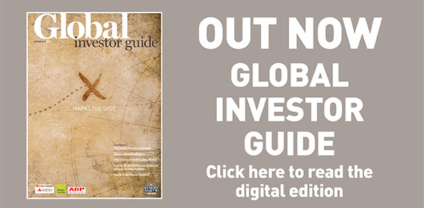 Global investor guide button